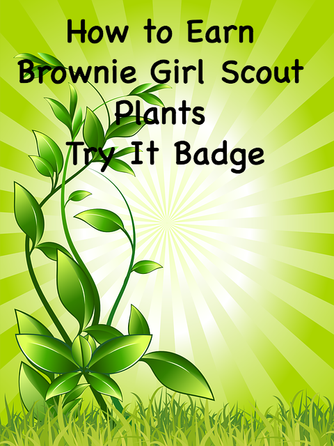 How to Earn Brownie Girl Scout Plants Try It Badge