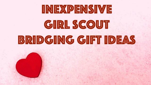 girl scout junior ideas