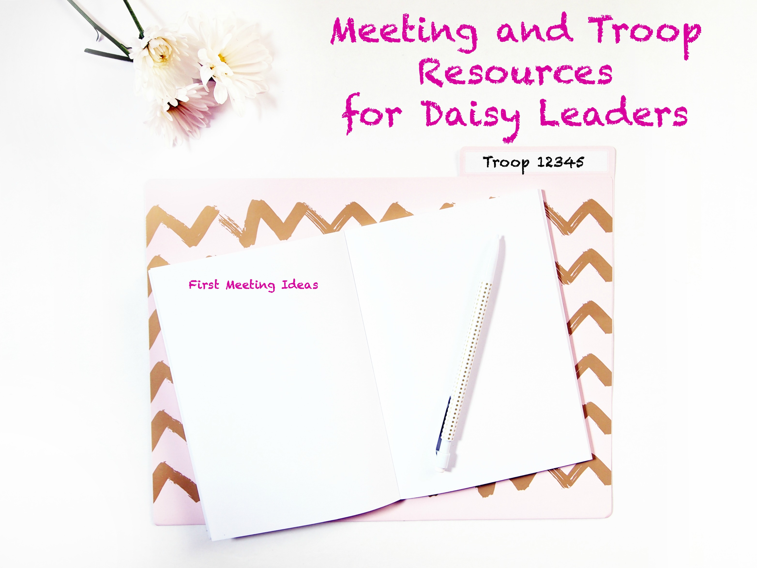 Here is a list of online resources that new Daisy leaders can use for planning their first or second year of troop meetings.