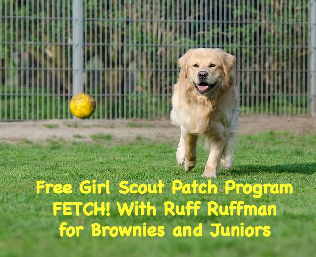 Brownies and Juniors can earn a badge steeped in science and engineering from the PBS Show FETCH! With Ruff Ruffman.