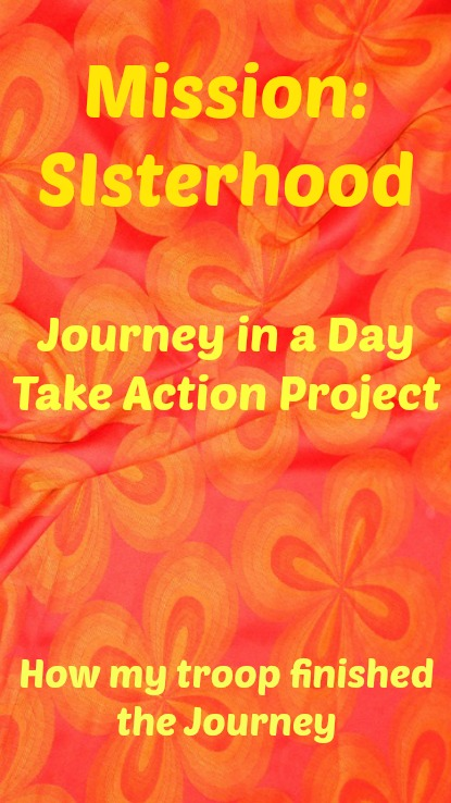 Mission Sisterhood Take Action Project in a Day-how my troop accomplished their goal