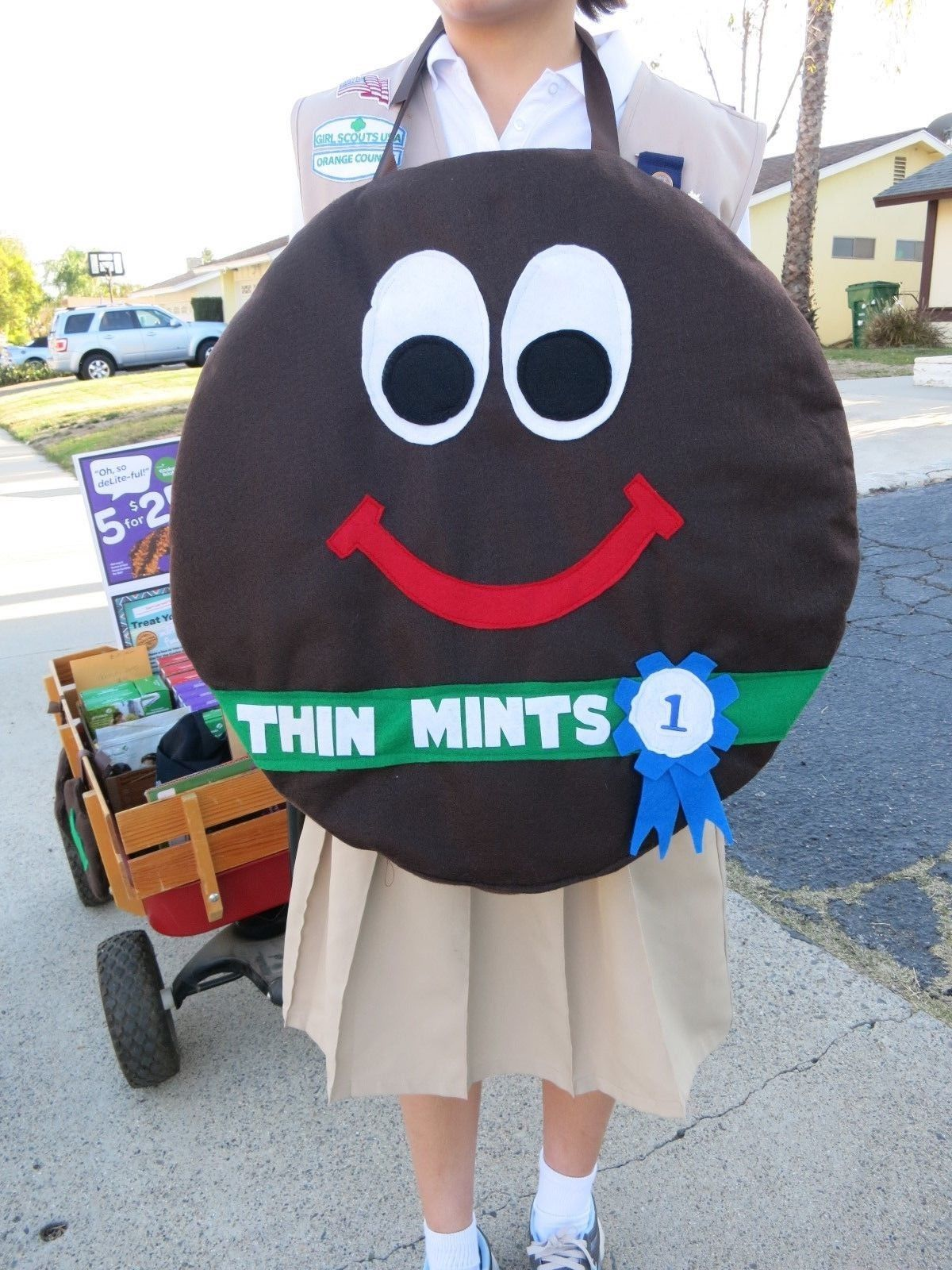 Girl Scout Cookie Thin Mints Costume for booths and walkabouts
